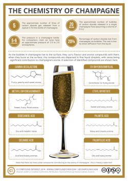 champagne chem layout