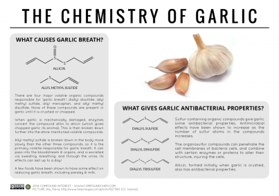 chem of garlic.png